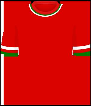 Czerwona koszulka Portugalii, z poziomymi paskami biało-czerwono-zielonymi na końcówkach rękawów