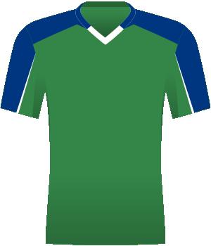 Zielona koszulka reprezentacji Irlandii Północnej, z niebieskimi barkami, niebieską połową rękawów (górną).
