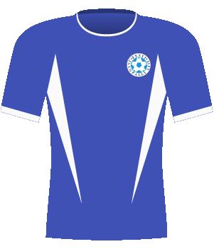 Koszulka Estonii z 2003 roku.