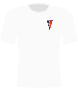 Koszulka Pogoń Szczecin (2009/2010).