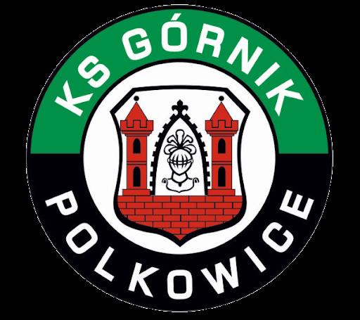 Herb Górnik Polkowice.