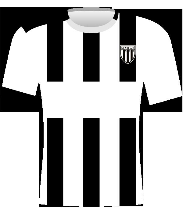 Koszulka Sandecja Nowy Sącz (2020-2021).