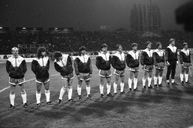 Reprezentacja Polski przed meczem ze Szwecją w Chorzowie.