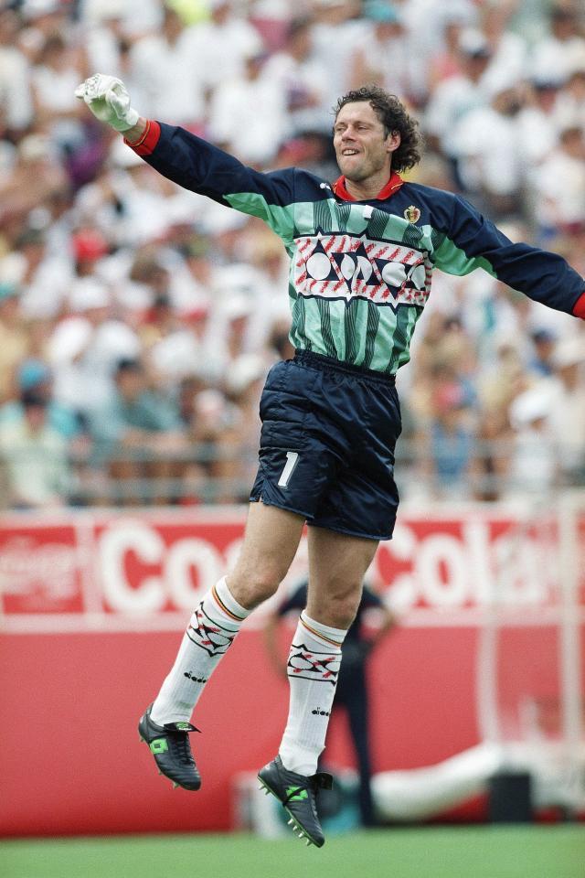 Michel Preud'homme - porównanie piłkarzy